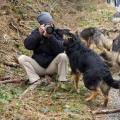 Rencontres chiens-21