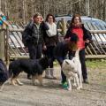 Rencontres chiens-3