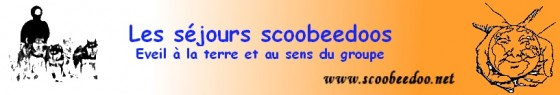 Les séjours Scoobeedoo