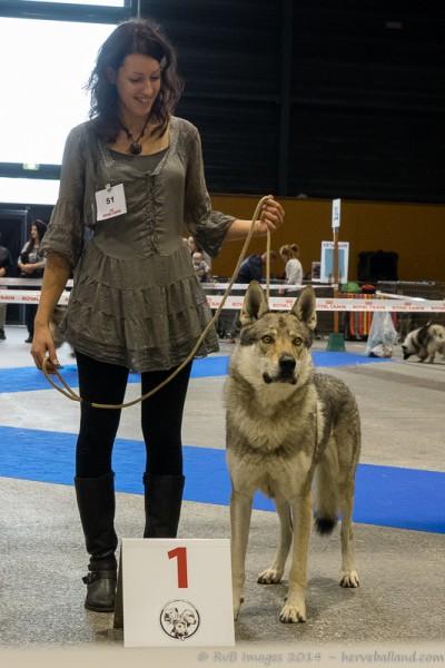 Expo Canine Metz-2
