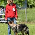 ne-boersch-2014-533