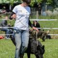ne-boersch-2014-545